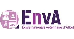 Logo ENVA